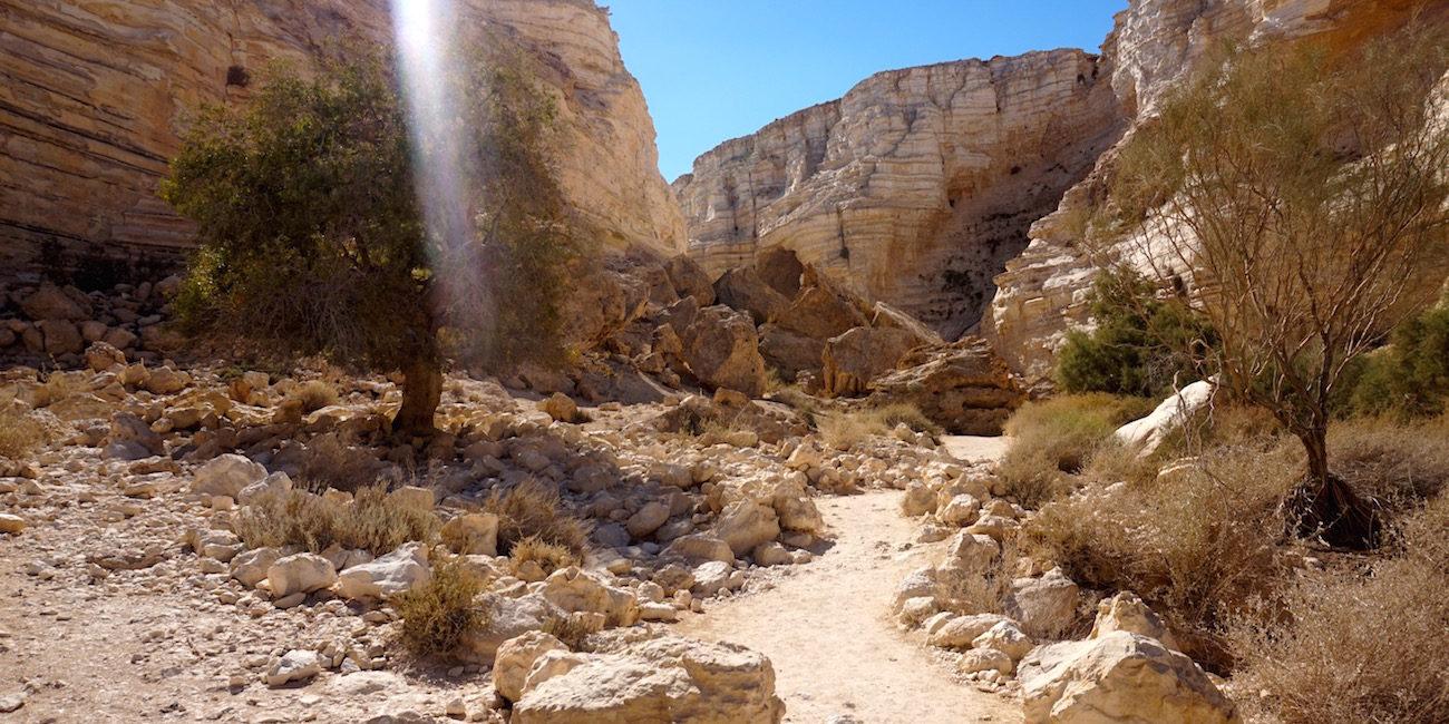 Desert Landscape Israel Hiking
