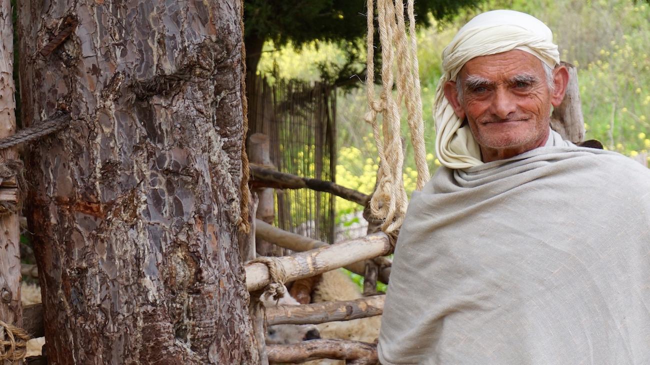 Shepherd At Nazareth Village